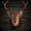 Ace Deer Hunter是一款有絕佳的3D立體圖形的打獵動作遊戲。它包含以下的遊戲特色: - 傾斜控制與觸控控制 - 令人驚奇的圖形與音效