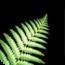 參考售價(美金):0.99元 這款軟體可幫助您逃離都市煩囂並享受純淨又寧靜的紐西蘭大自然之聲 […]