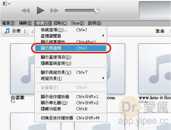 20121231 iTunes Side