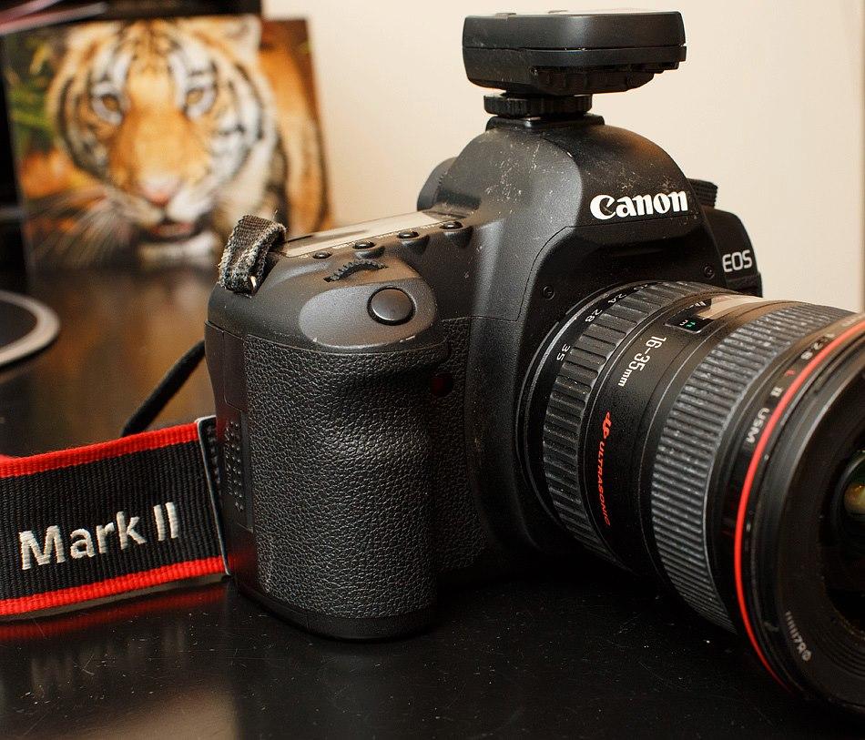 20130105 A Lion Steals My Camera-22