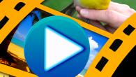 現在你隨時可以上傳個性化的影片在YouTube上分享,使用 FotoSlides HD 可為 […]