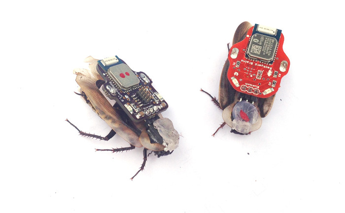 The RoboRoach-2
