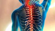 瑜珈與提拉皮斯都可應用於伸展、復建及舒緩疼痛上,根據古老的經文記載,背部疼痛是由缺乏適當的鍛 […]