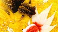 「金魚」的發音與「金玉」相似,在中國與日本地區象徵著富貴、吉祥、金玉滿堂的美好意思,Wa K […]