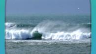 RelaxBook Ocean 是一套用於緩解壓力的音樂軟體,透過海洋的聲音:海浪、海鳥叫聲 […]
