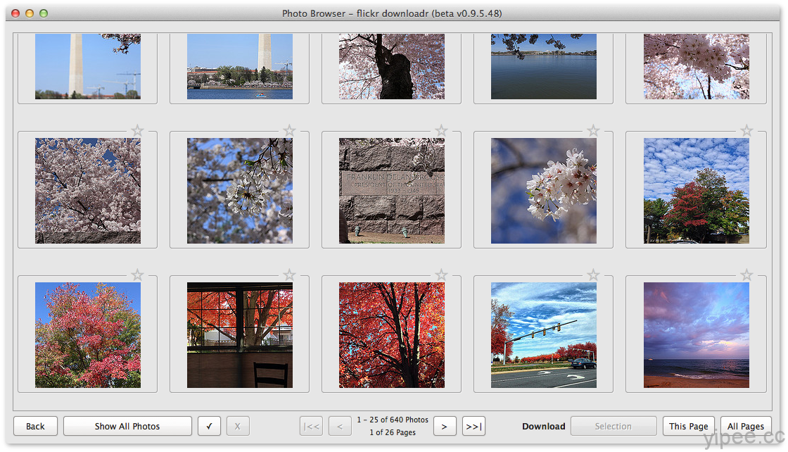 flickr downloadr – Batch download your flickr photos! 批量下載你的Flickr照片