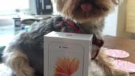 iPhone 6S 9月25日才正式上市,美國加州聖地牙哥的視覺設計師 Adrienne 已 […]