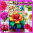 製作紙花是一種簡單,經濟的和有趣的方式來裝飾一個特殊的場合。 […]
