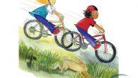 米莉與茉莉騎著自行車要去拜訪奶奶,她們計劃中午12點到達,這樣還可以吃到奶奶做的豐盛午餐。不 […]