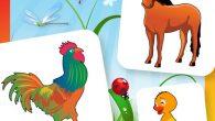 這是一款適合學齡前兒童的記憶匹配遊戲,適合各個年齡層。遊戲以農場的動物為主,還有搭配動物的聲 […]