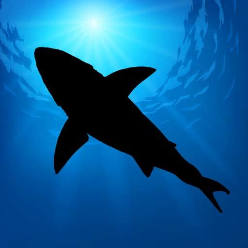 【iOS APP】Megalodon 巨齒鯊 AR 體驗