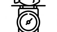 《Unit Converter》是一款快速的單位轉換器,可轉換常用的測量單位。軟 […]